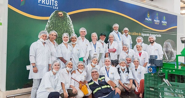 International Delegation highlights the reasons that make Valle del Cauca a powerful region for the investment in Hass Avocado, Invest Pacific