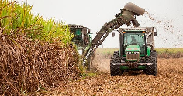 El Valle del Cauca y su potencial agrícola, en la mira de inversionistas extranjeros, Invest Pacific