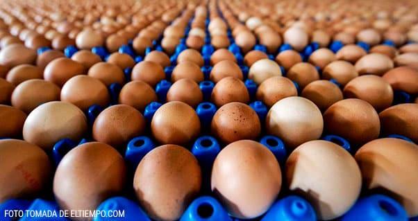 El suroccidente del país generó 4.250 millones de huevos en un año, Invest Pacific