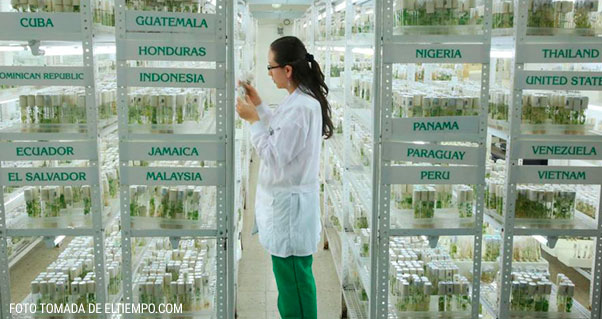 El Centro de Investigación clave para el mundo de la alimentación, Invest Pacific